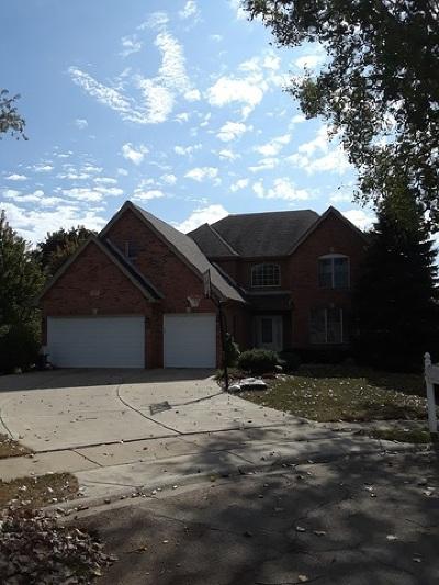 Palatine Single Family Home For Sale: 278 Illinois Avenue