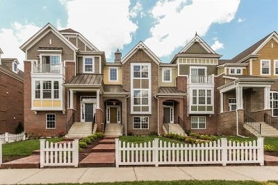 Naperville Condo/Townhouse Contingent: 4182 Royal Mews Lot# 02.02 Circle