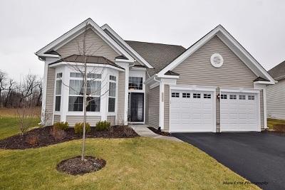Elgin Single Family Home For Sale: 3868 Eagle Ridge Drive