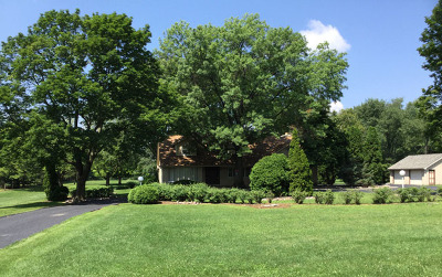 Naperville Single Family Home For Sale: 8s220 College Road