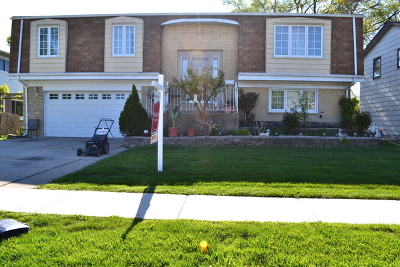 Mount Prospect Single Family Home For Sale: 1118 South Busse Road