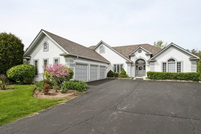 Lake Villa, Lindenhurst Single Family Home For Sale: 2532 Emerald Lane