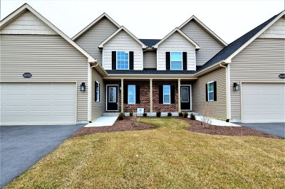 Channahon Condo/Townhouse For Sale: 26002 West Sandy Knoll Drive