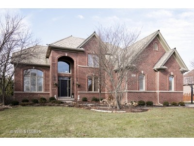 South Elgin Single Family Home For Sale: 712 Waters Edge Drive