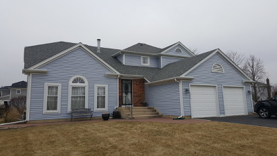 Lisle Single Family Home For Sale: 4575 Basswood Drive