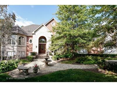 Homer Glen Single Family Home For Sale: 16440 South Alberta Court