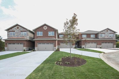Downers Grove Condo/Townhouse For Sale: 2203 Maple Hill Court