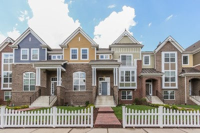 Naperville Condo/Townhouse Contingent: 4170 Royal Mews Lot# 01.05 Circle