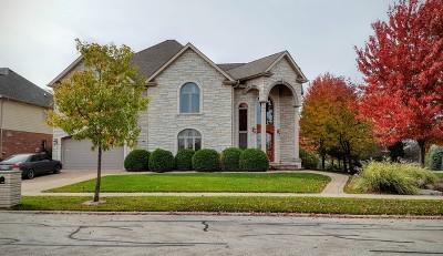 Orland Park Single Family Home For Sale: 16704 Julie Ann Lane