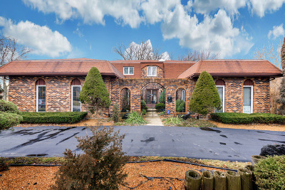 Bensenville Single Family Home For Sale: 810 Brentwood Drive
