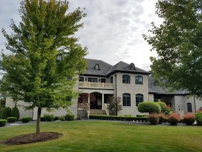 Homer Glen Single Family Home For Sale: 14011 West Erin Lane