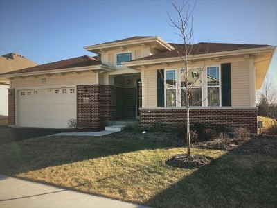 Naperville Single Family Home For Sale: 2939 Chevy Chase Lane