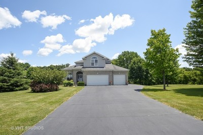 Johnsburg Single Family Home For Sale: 5008 Country Springs Drive