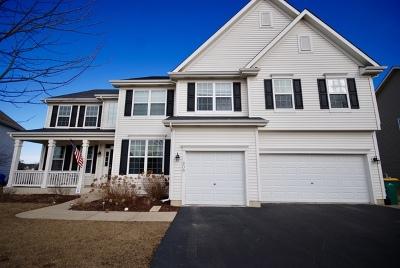 Lake Villa, Lindenhurst Single Family Home For Sale: 609 Blazing Star Drive