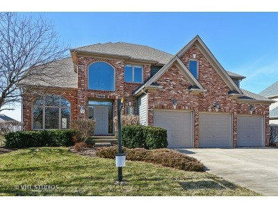 Aurora Single Family Home For Sale: 2700 Ginger Woods Drive