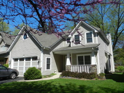 Downers Grove Single Family Home For Sale: 6261 Janes Avenue