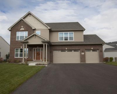 Joliet Single Family Home For Sale: 7202 Yorkshire Street