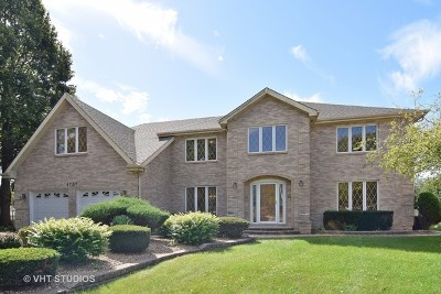 Mount Prospect Single Family Home For Sale: 1707 Frediani Court