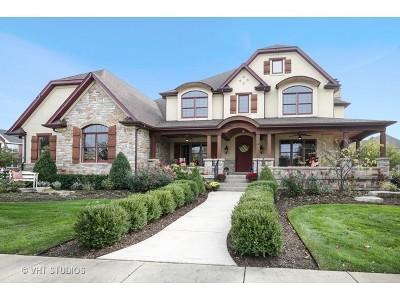 Batavia Single Family Home For Sale: 632 Fox Trail Drive