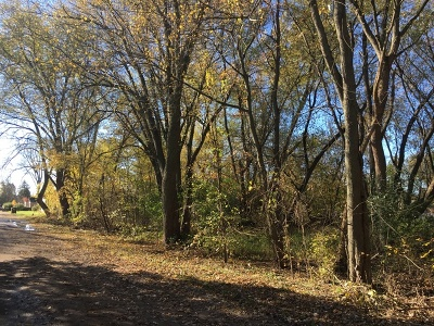 Crystal Lake Residential Lots & Land Re-Activated: Lot 6 Greenfield Road
