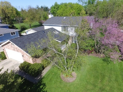 Glen Ellyn Single Family Home Contingent: 1n537 Goodrich Avenue