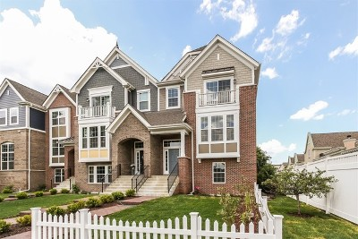 Naperville Condo/Townhouse For Sale: 4194 Royal Mews Lot# 02.08 Circle
