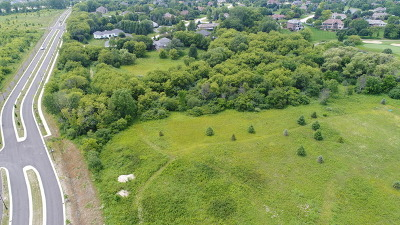 Elgin Residential Lots & Land For Sale: Lot 100 South Street
