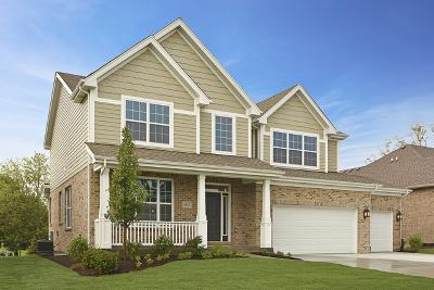 Orland Park Single Family Home For Sale: 10031 El Cameno Re'al Drive