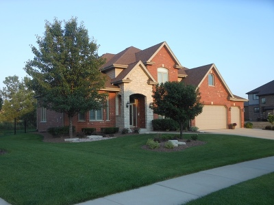 Mokena Single Family Home Contingent: 21663 Skyway Drive