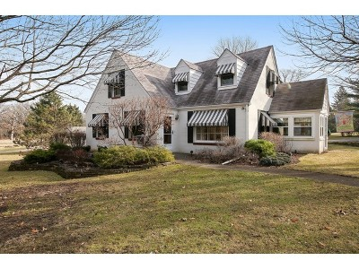 Burr Ridge Single Family Home For Sale: 9000 Wolf Road
