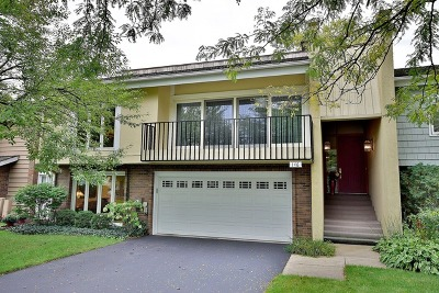 Oak Brook Condo/Townhouse For Sale: 146 Briarwood North