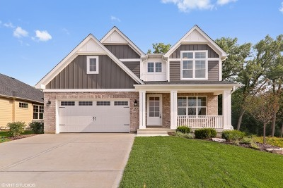 Darien Single Family Home Contingent: 2126 Cottage Lane