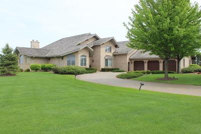 Monee Single Family Home For Sale: 6963 West Gabreski Lane