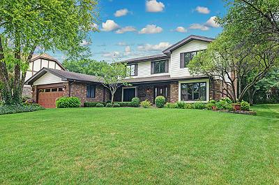 Burr Ridge Single Family Home For Sale: 7652 Ridgewood Lane