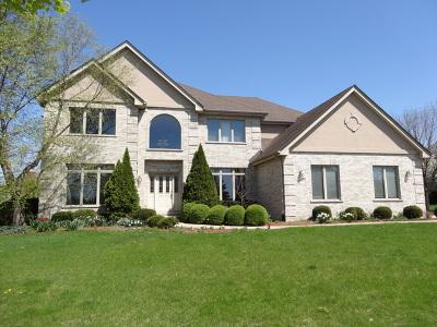 Burr Ridge Single Family Home For Sale: 6887 Fieldstone Drive