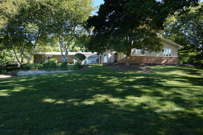 Elburn Single Family Home For Sale: 41w558 Farview Road