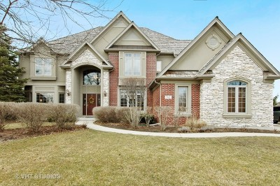 South Elgin Single Family Home For Sale: 792 Waters Edge Drive