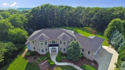 Batavia Single Family Home For Sale: 38w229 Grove Hill Court