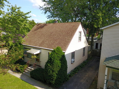 Steger Single Family Home For Sale: 28 West 35th Place