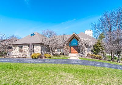 Burr Ridge Single Family Home Contingent: 158 Tomlin Circle