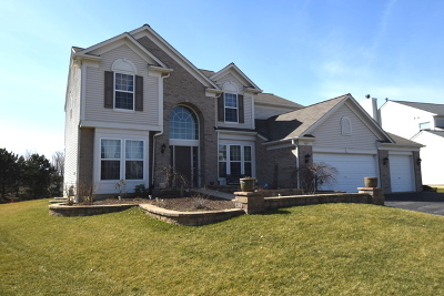 Bolingbrook Single Family Home For Sale: 369 Hogan Street