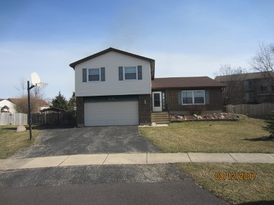 Carol Stream Single Family Home For Sale: 149 Pebblecreek Trail