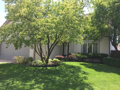 Streamwood Single Family Home Contingent: 111 Borris Circle