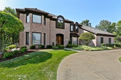 Oak Brook Single Family Home For Sale: 303 Polo Lane