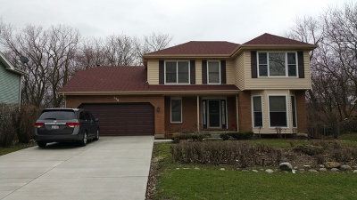 Willowbrook Single Family Home For Sale: 339 59th Street