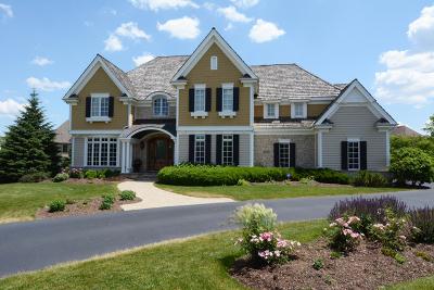 Geneva IL Single Family Home For Sale: $725,000