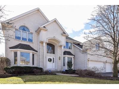 Burr Ridge Single Family Home Contingent: 6812 Fieldstone Drive