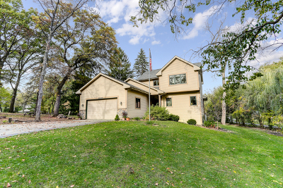 Downers Grove Single Family Home For Sale: 20w070 Timber Trails Road