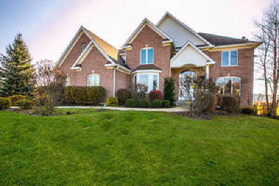 McHenry Single Family Home For Sale: 2407 Willow Creek Road