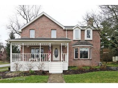 Clarendon Hills Single Family Home For Sale: 266 Ann Street